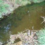 potok u Černýše